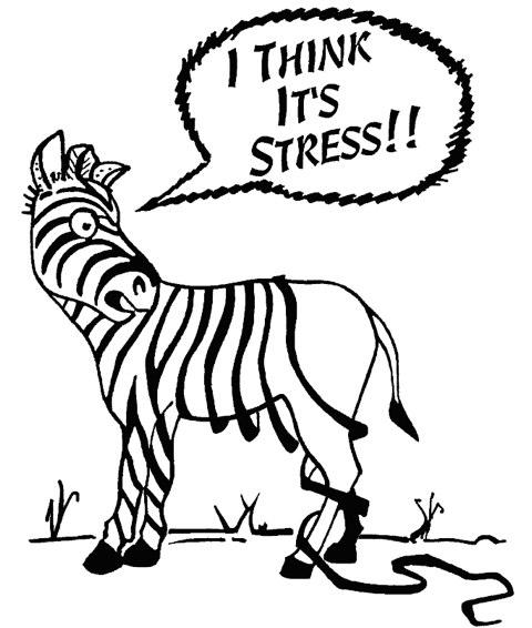 body stress